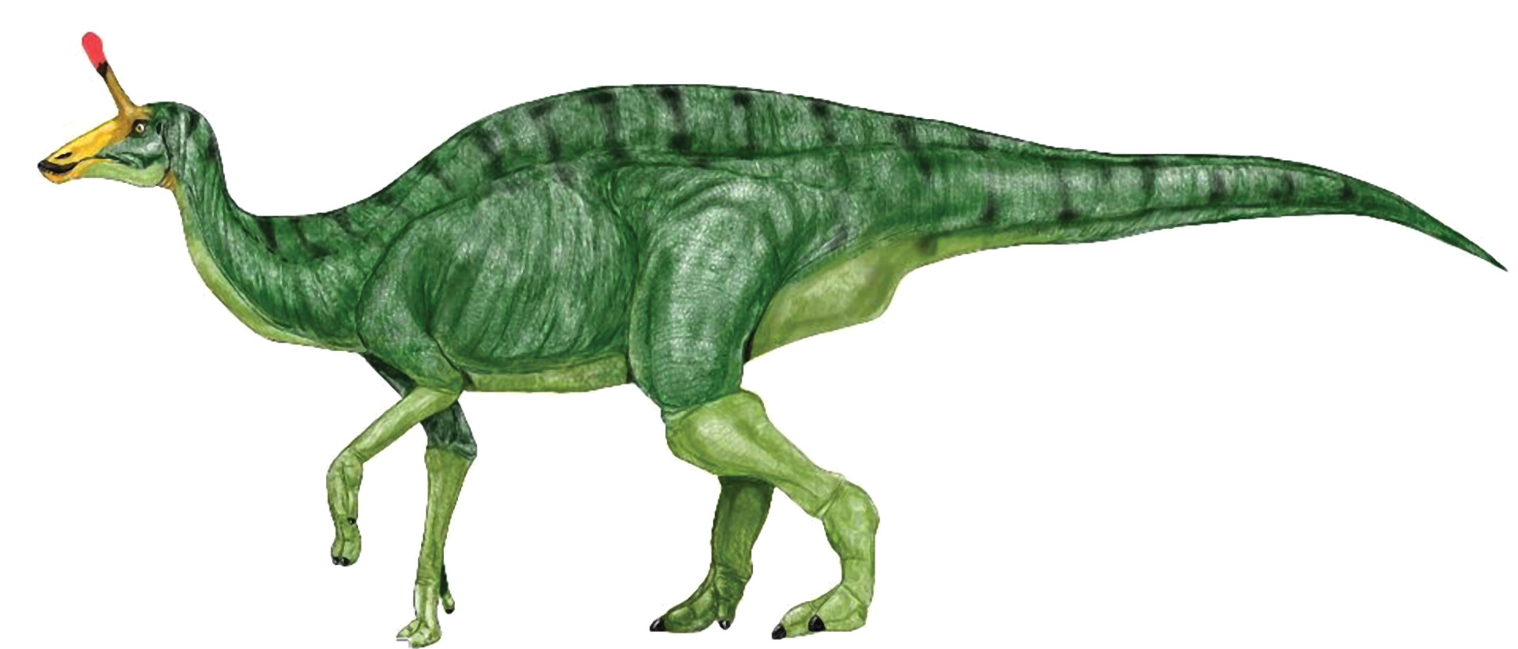 Dinosaur clip art free. Green clipart t rex