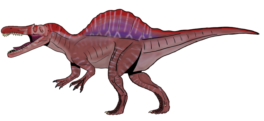 A concept remake by. Dinosaur clipart spinosaurus