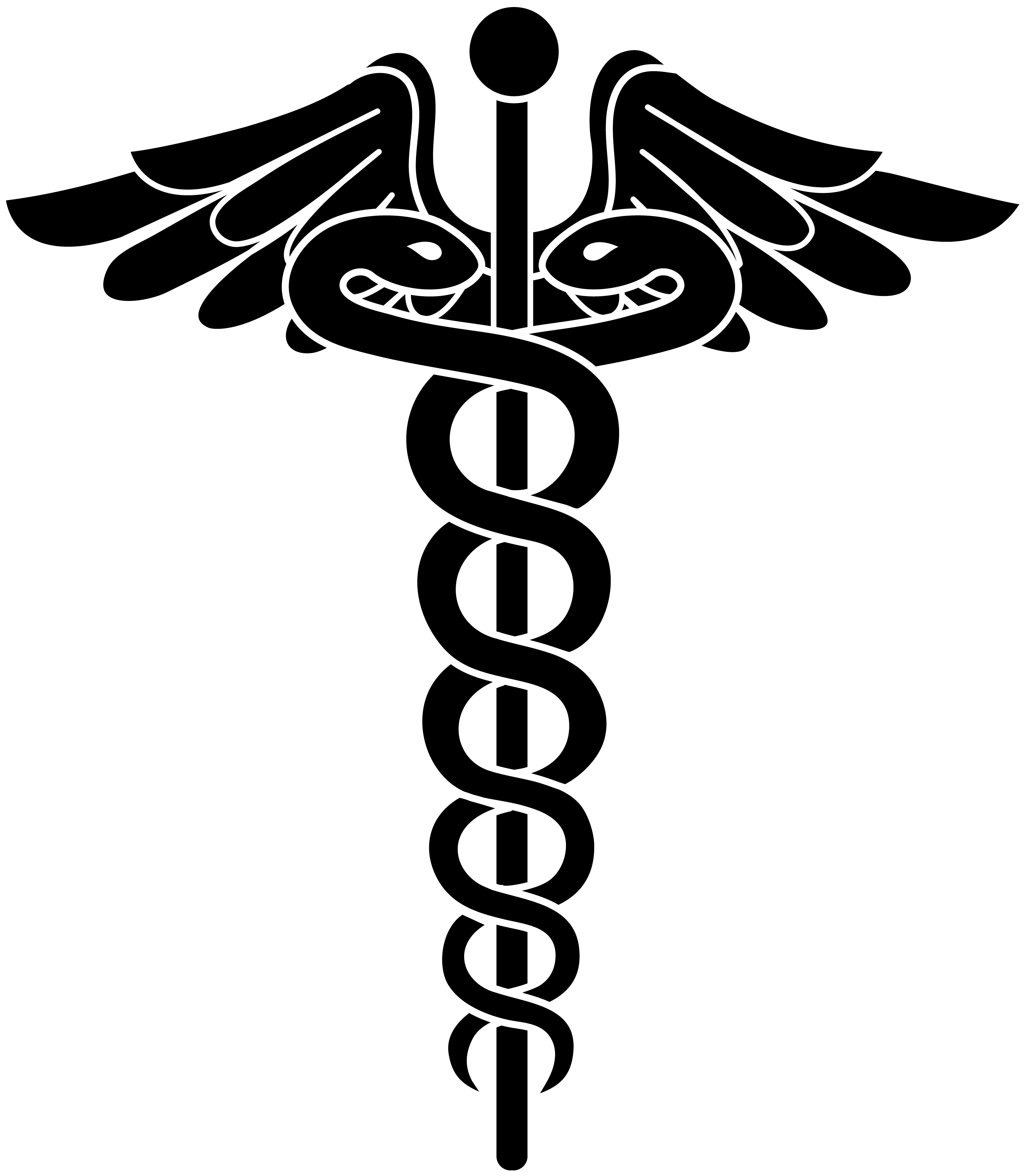 Black panda free images. Report clipart doctor notes
