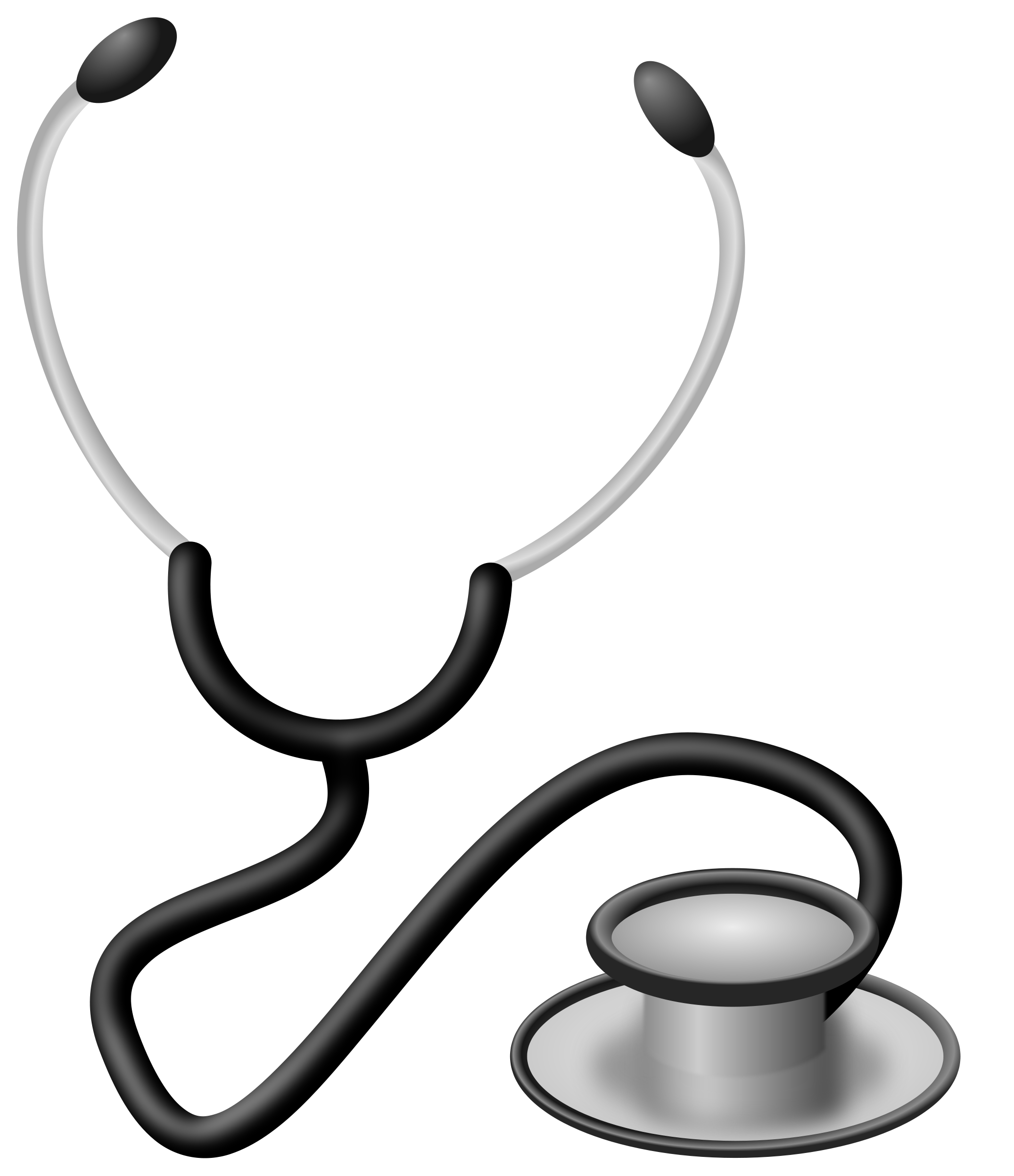 Clip art images panda. Heartbeat clipart stethoscope