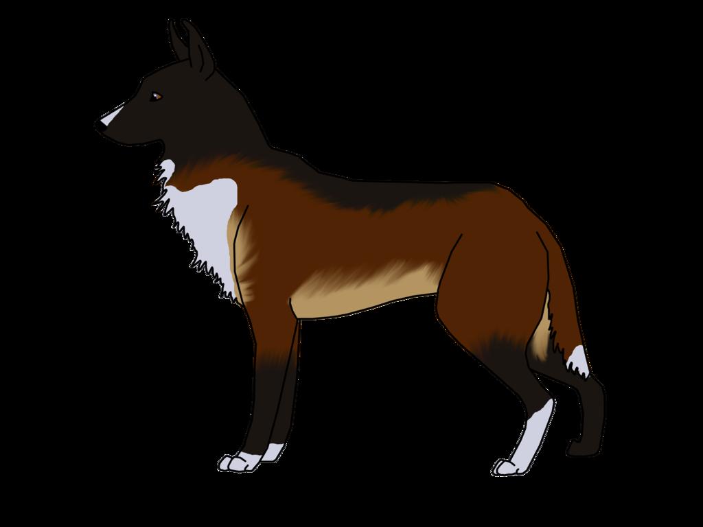 Clipart dog boxer. Xxx wolfrun s caliber