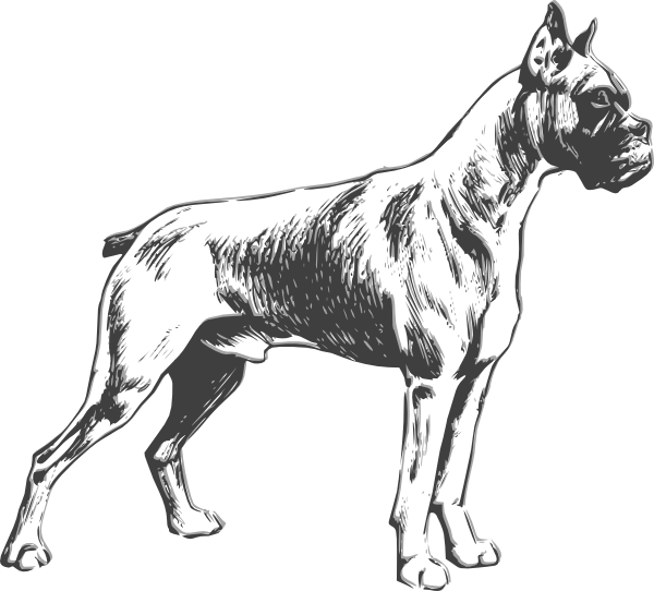 Silhouette clip art at. Clipart dog boxer