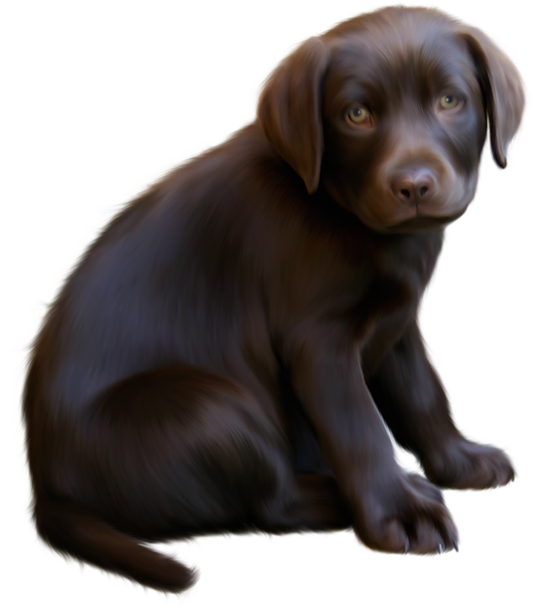 Clipart puppy brown puppy. Cute little dog with