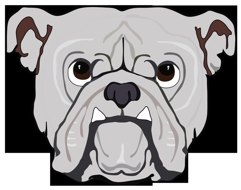 Pitbull street dog