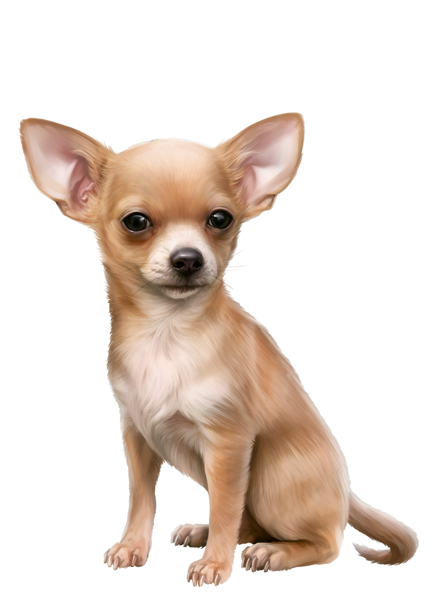 Oscar png dog d. Want clipart wag