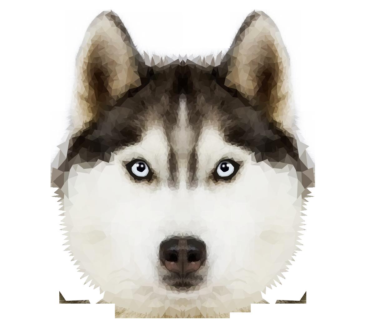 Png transparent images pluspng. Husky clipart head silhouette