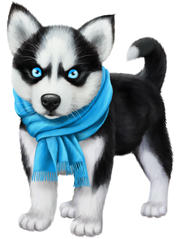 Husky clipart puppie. Chiens dog puppies wallpapers
