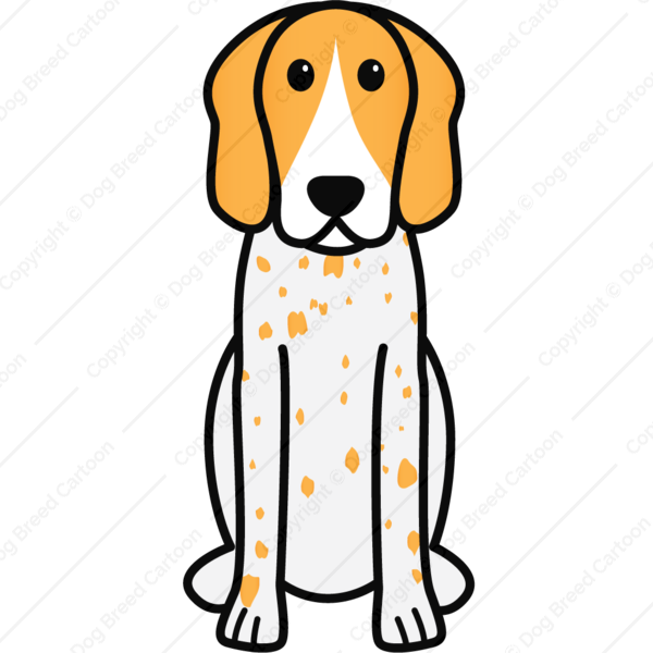 American english coonhound orange. Dogs clipart picture frame