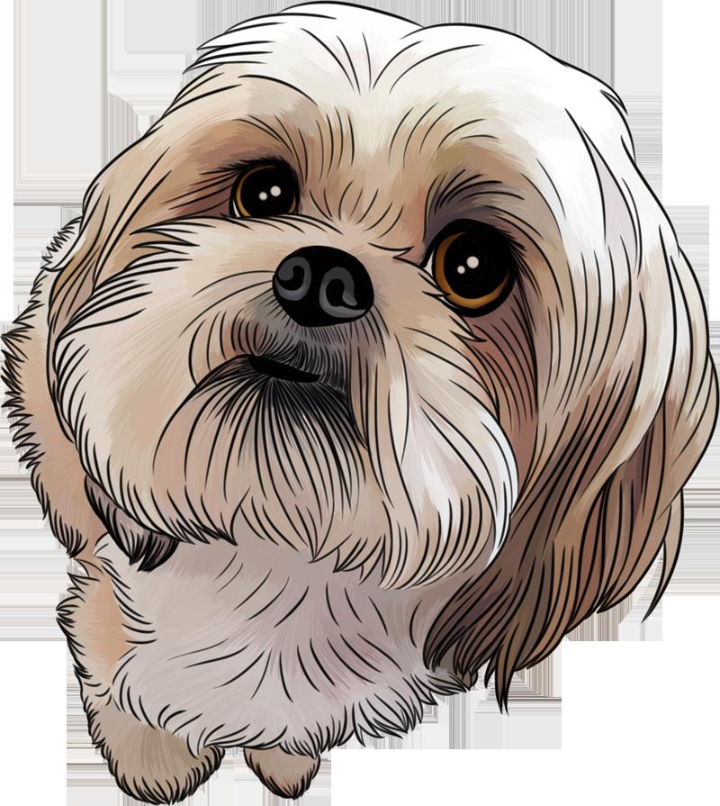 Clipart dog shitzu.  collection of shih