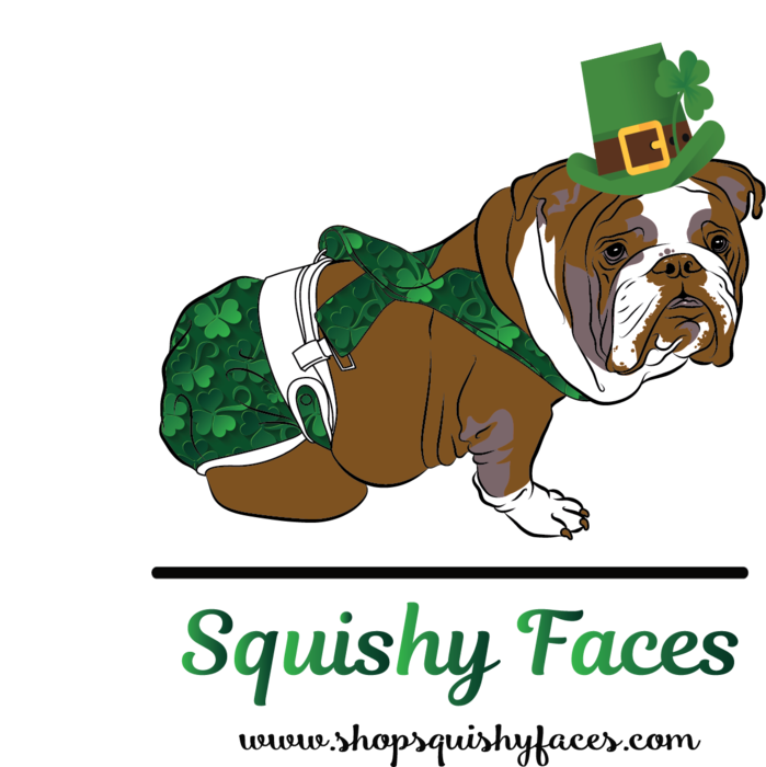 Patricks squishy faces you. Clipart dog st patrick day