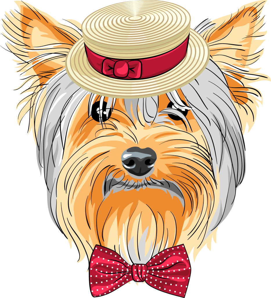 clipart dogs yorkie