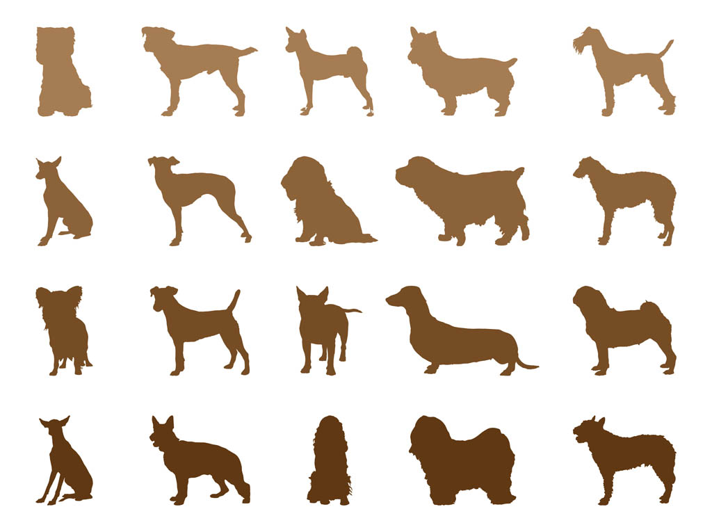 Free images of download. Clipart dogs body