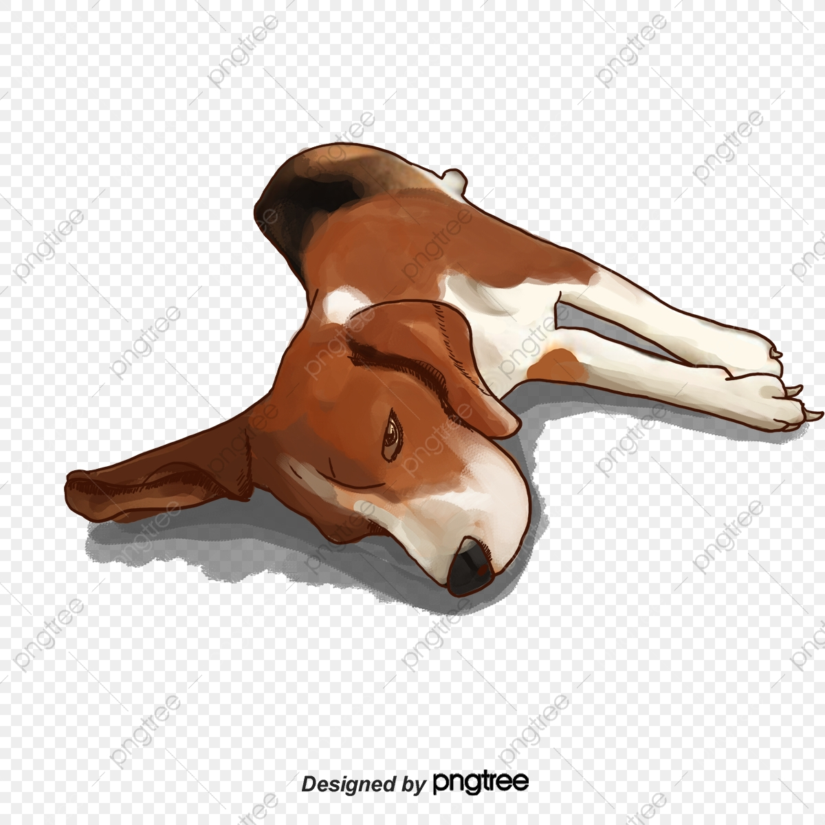 A child sleeping on. Clipart dogs body