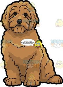 Dog clipart doodle. A very cute golden