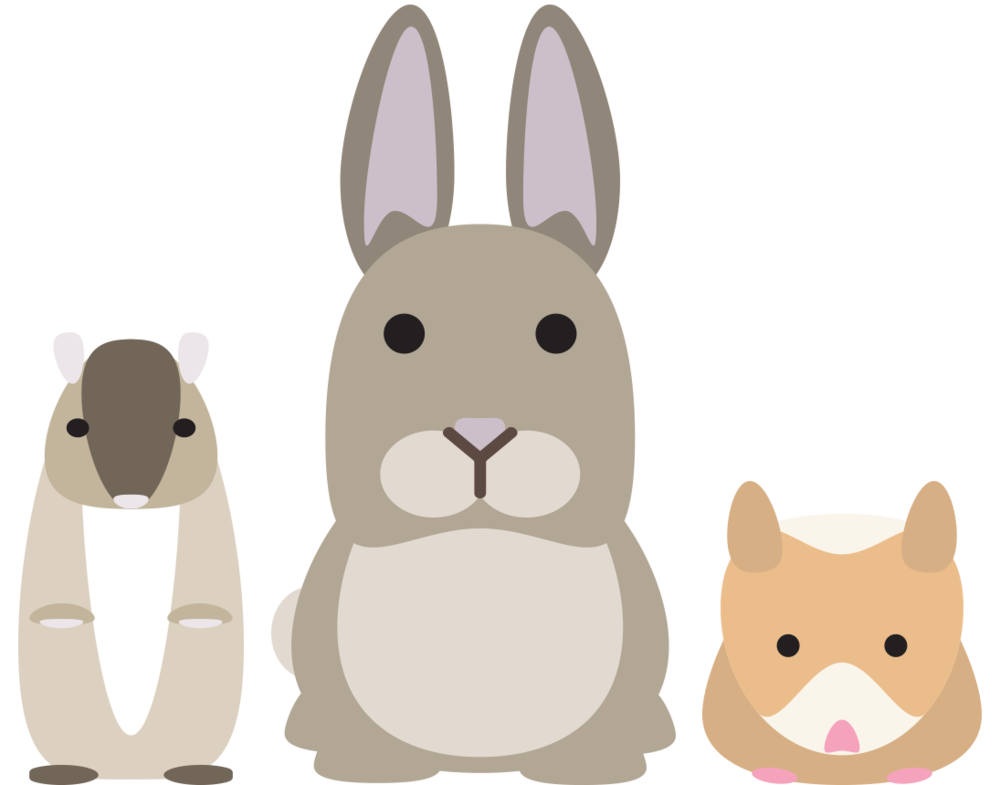 Sellwood supply small animal. Pet clipart rabbit