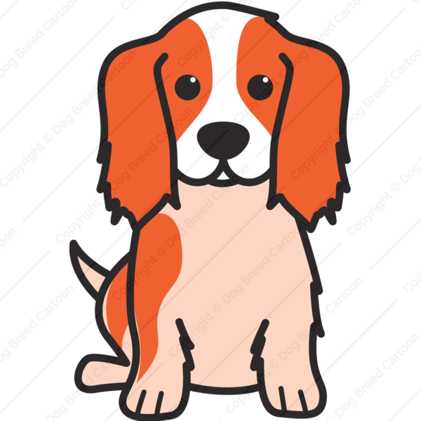 Clipart dogs picture frame. Cavalier king charles spaniel