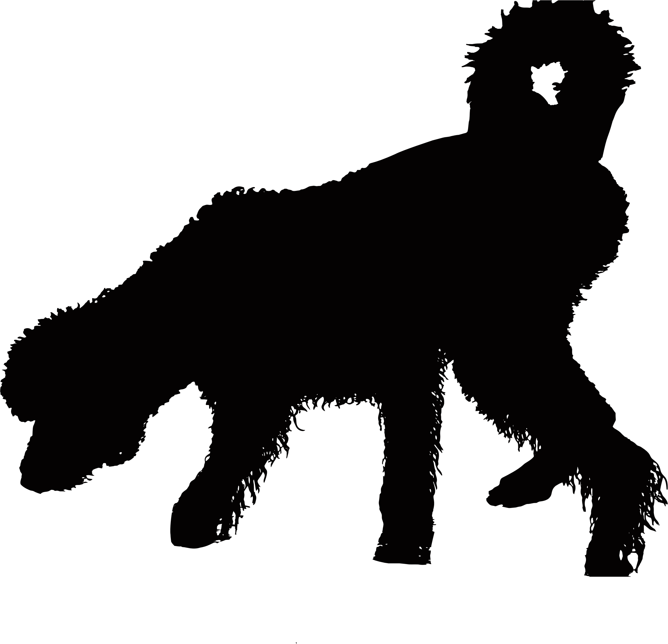 Shaggy dog silhouette big. Wet clipart wet puppy
