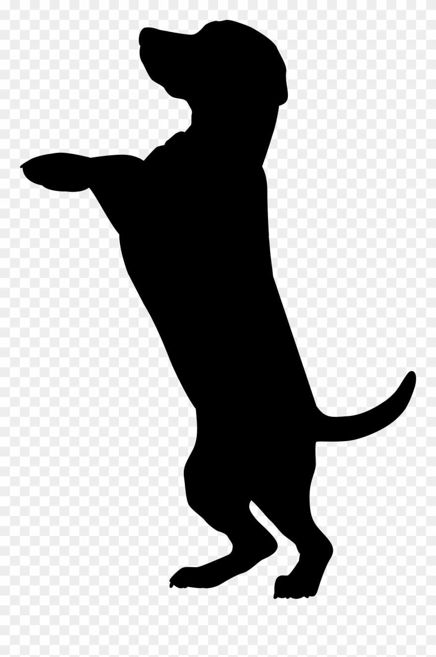 Chocolate lab at getdrawings. Clipart dogs silhouette