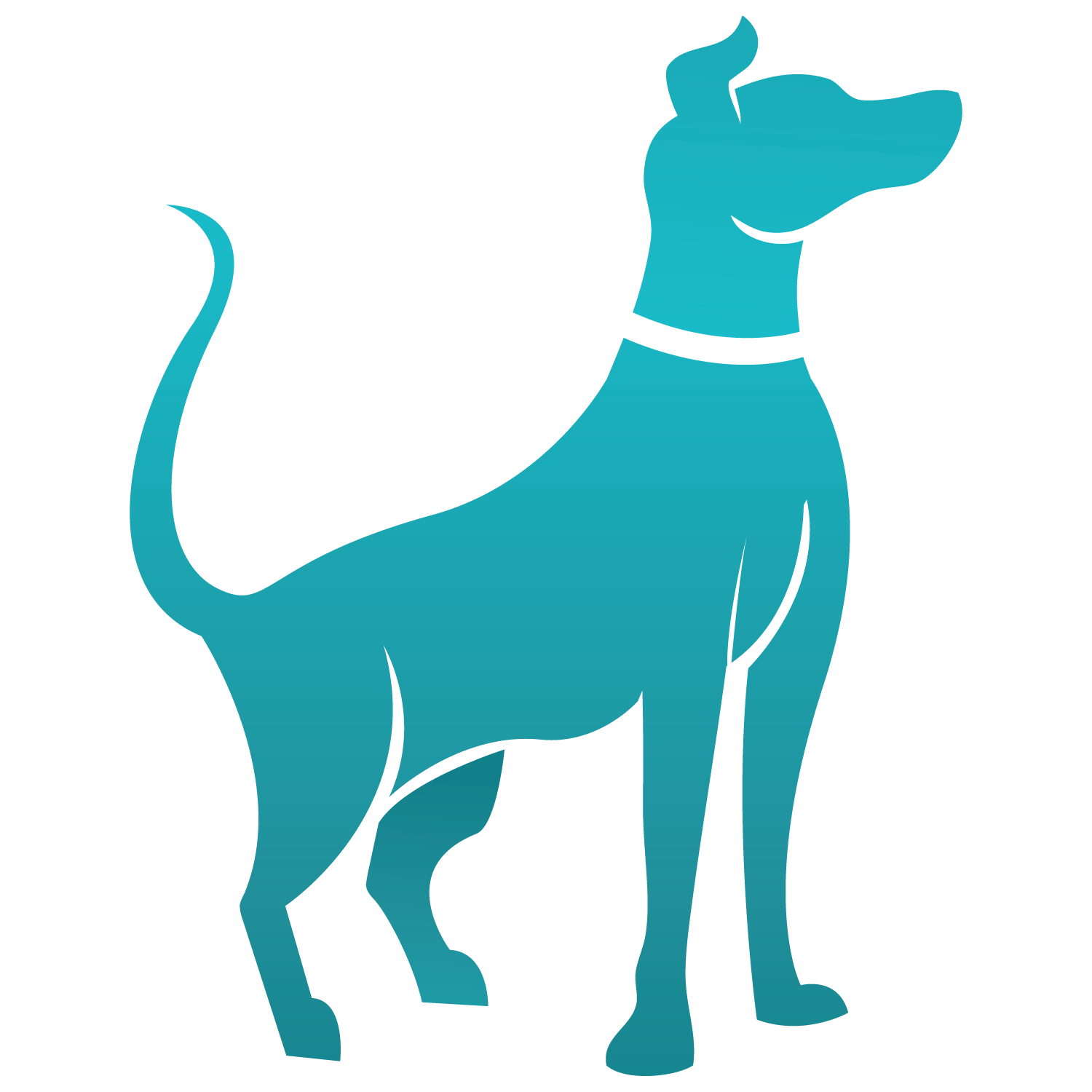 clipart dogs st patrick day