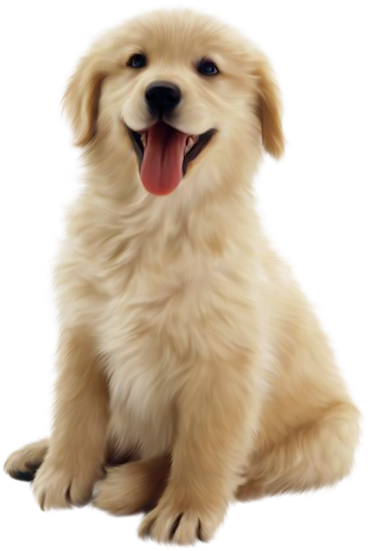 Pet clipart friend. Png puppy dog transparent