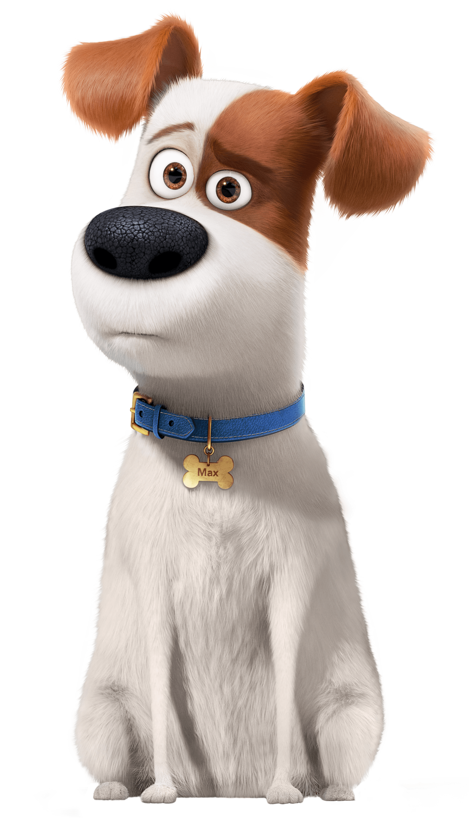 Clipart dogs worried. Max transparent png stickpng