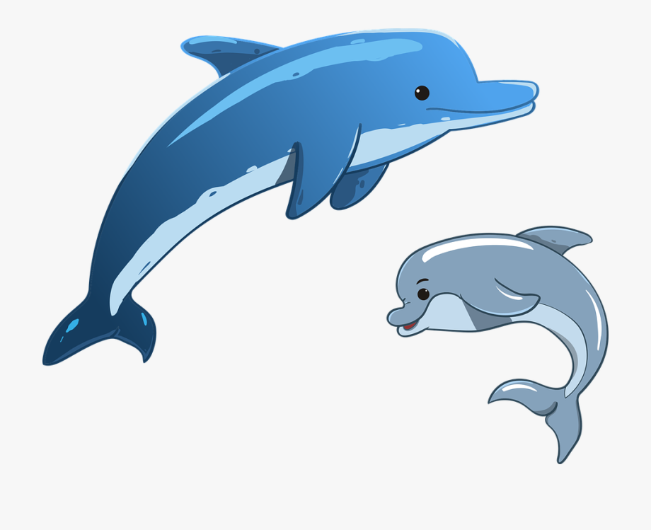 Dolphin clipart comic. Dolphins cartoon jumping png