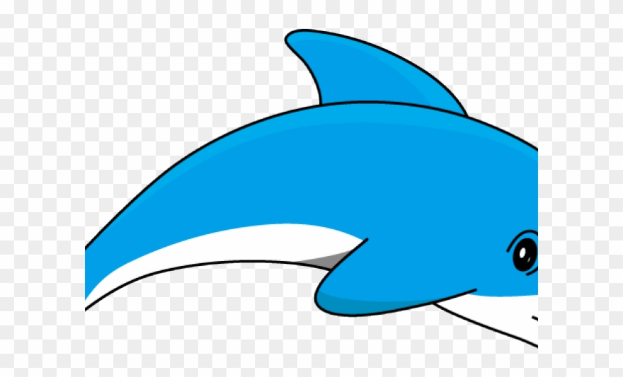 Dolphin cartoon images of. Dolphins clipart basic