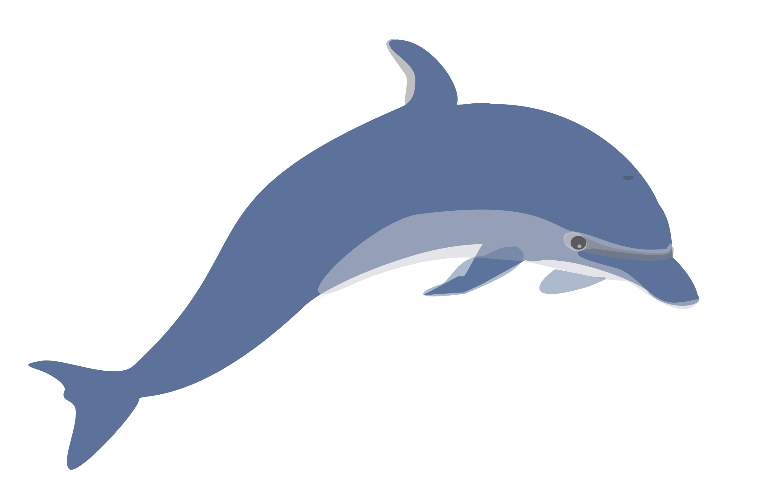 collection of no. Dolphin clipart dolphin love