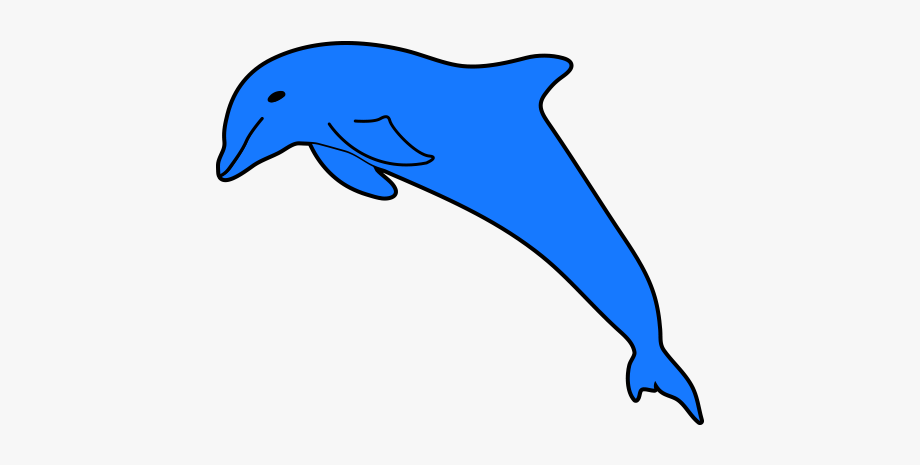 Dolphin clipart beach florida. Free clip art pictures