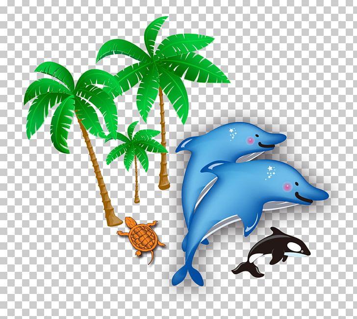 Sea png amusement park. Clipart dolphin beach
