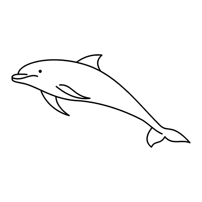 Free black and white. Dolphin clipart female shark