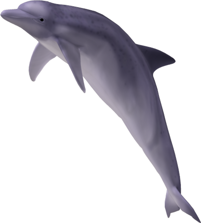 By clipartcotttage on deviantart. Dolphin clipart side view