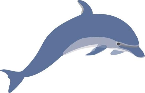 Free clip art transparent. Dolphin clipart vector