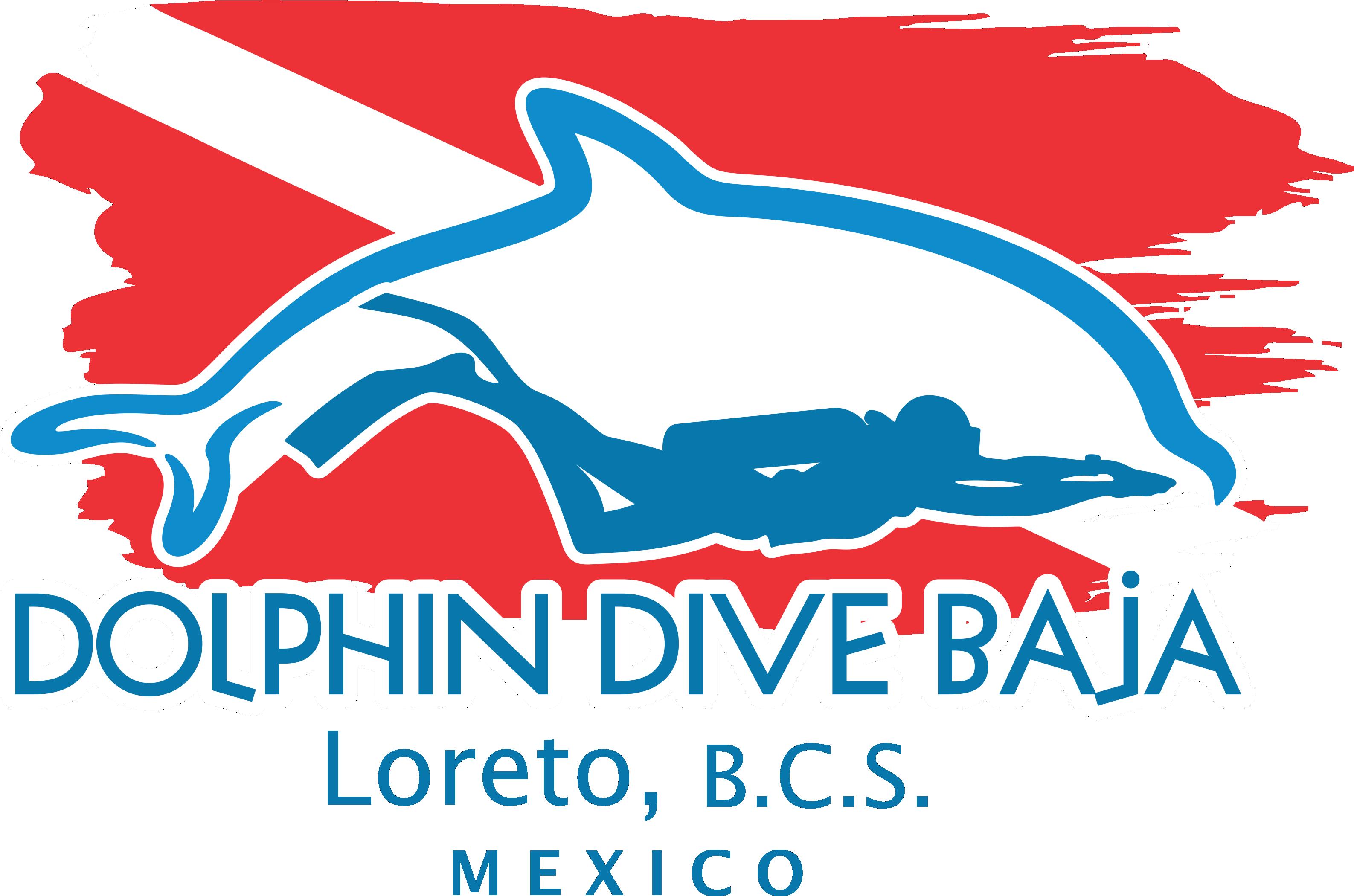 Dolphin clipart diving dolphin. Loreto mexico home dive