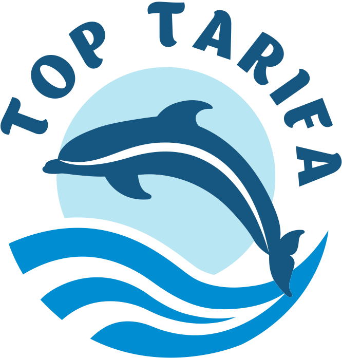 Top tarifa whale watching. Clipart dolphin dolfin