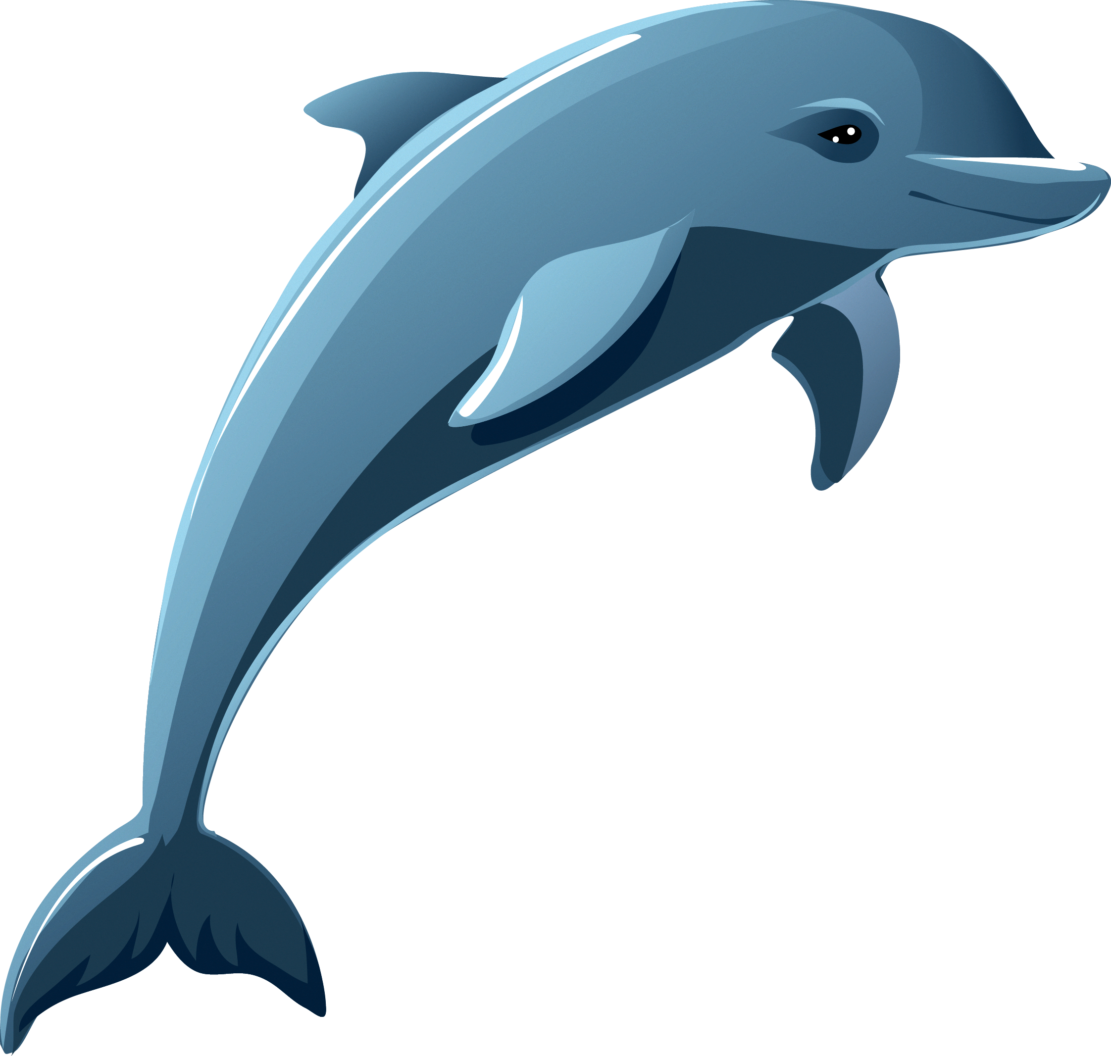 Stock photography clip art. Dolphins clipart bottlenose dolphin