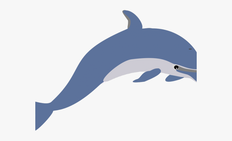 Dolphins sea creature clip. Clipart ocean dolphin