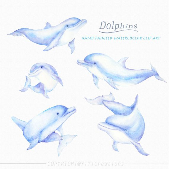 Clipart dolphin dolphin family. Sea creature dolphins clip