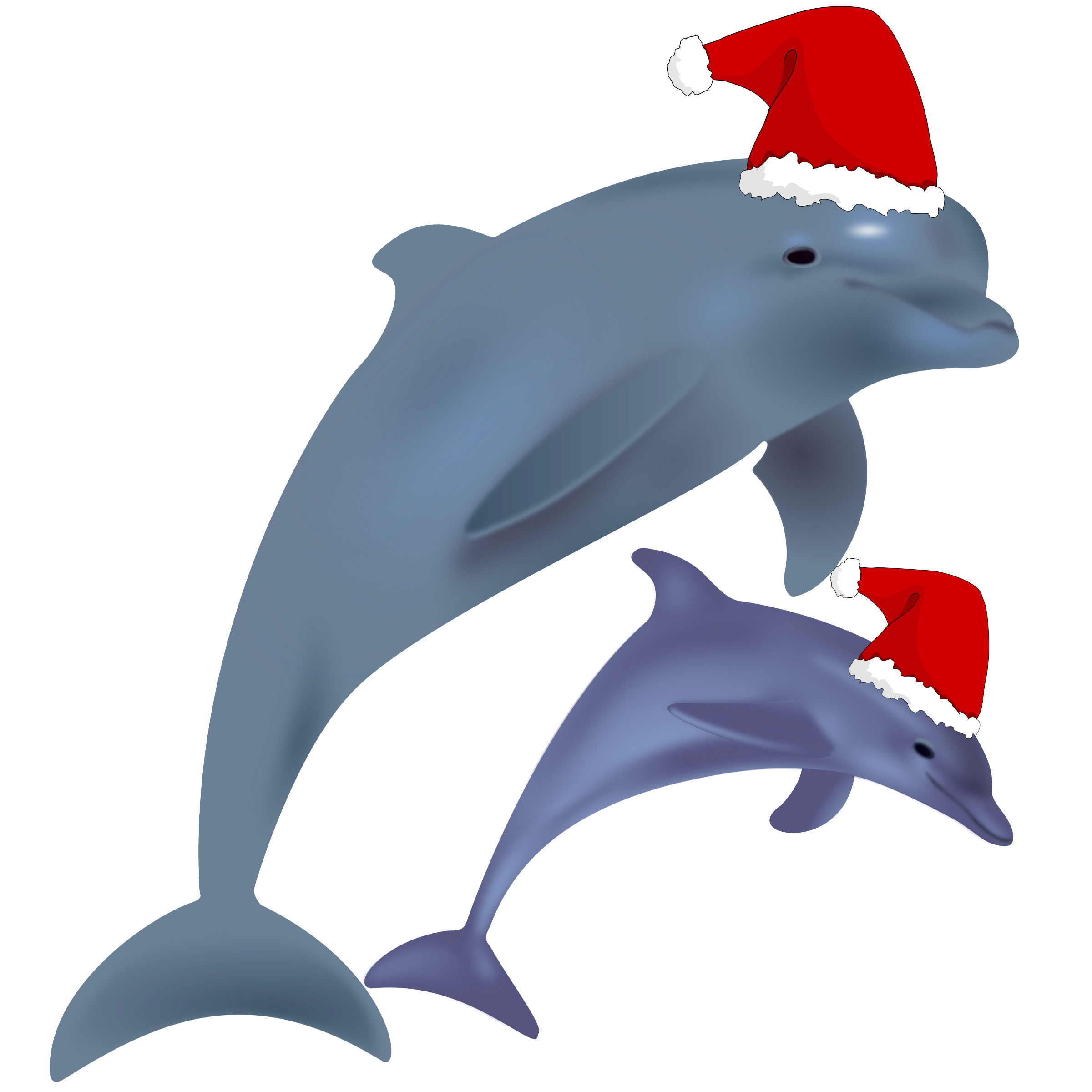 Christmas dolphins big image. Dolphin clipart svg