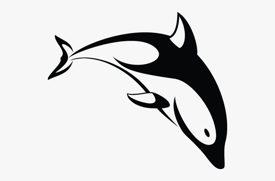 Dolphins drawing stylized transparent. Dolphin clipart dolphin love