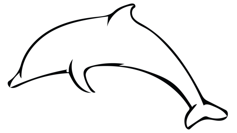 Outline savvy skillshare projects. Dolphin clipart easy