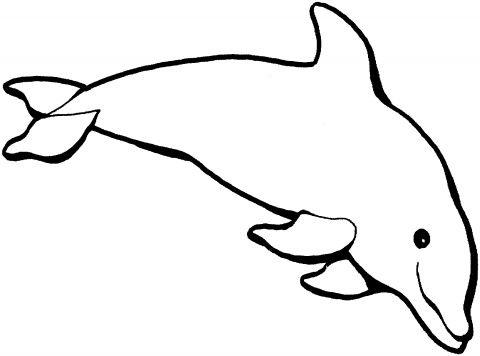Clip art . Clipart dolphin dolphin outline