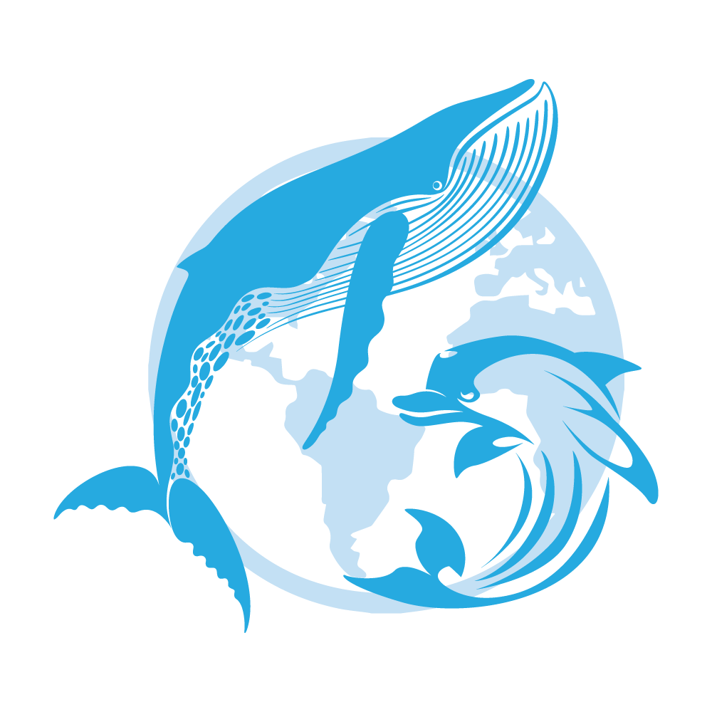 Dolphin clipart dolphin pod. Home cetacean academy about