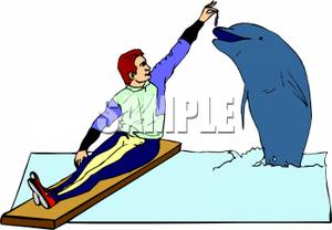 Clip art image a. Dolphin clipart dolphin trainer