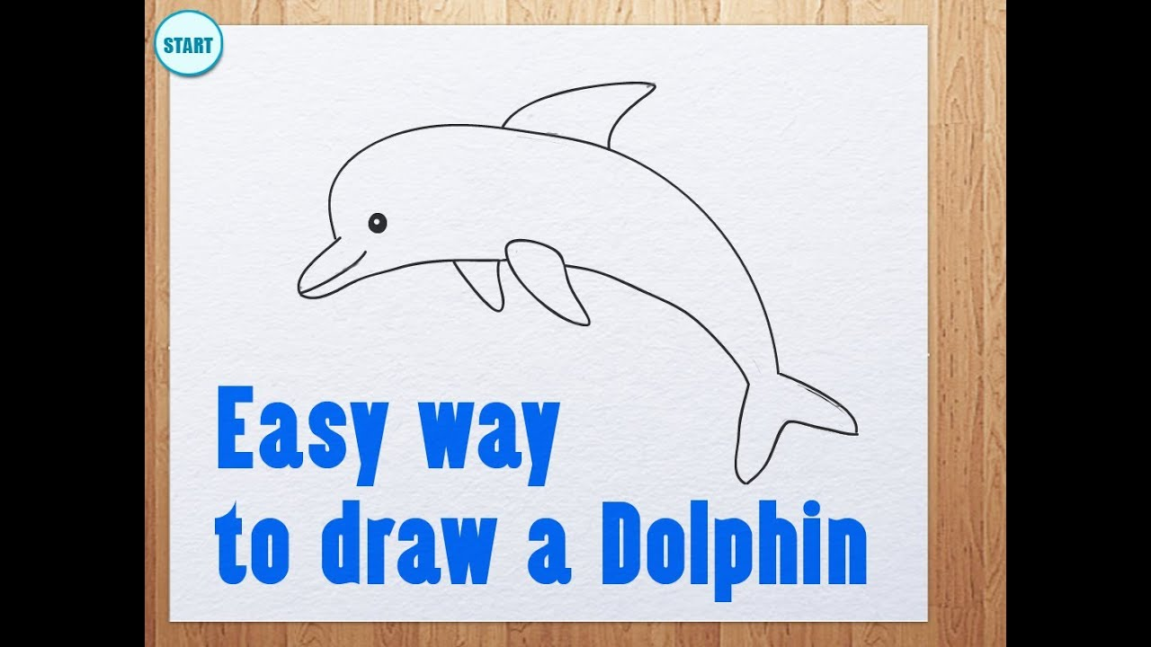Dolphin clipart easy. Way to draw a