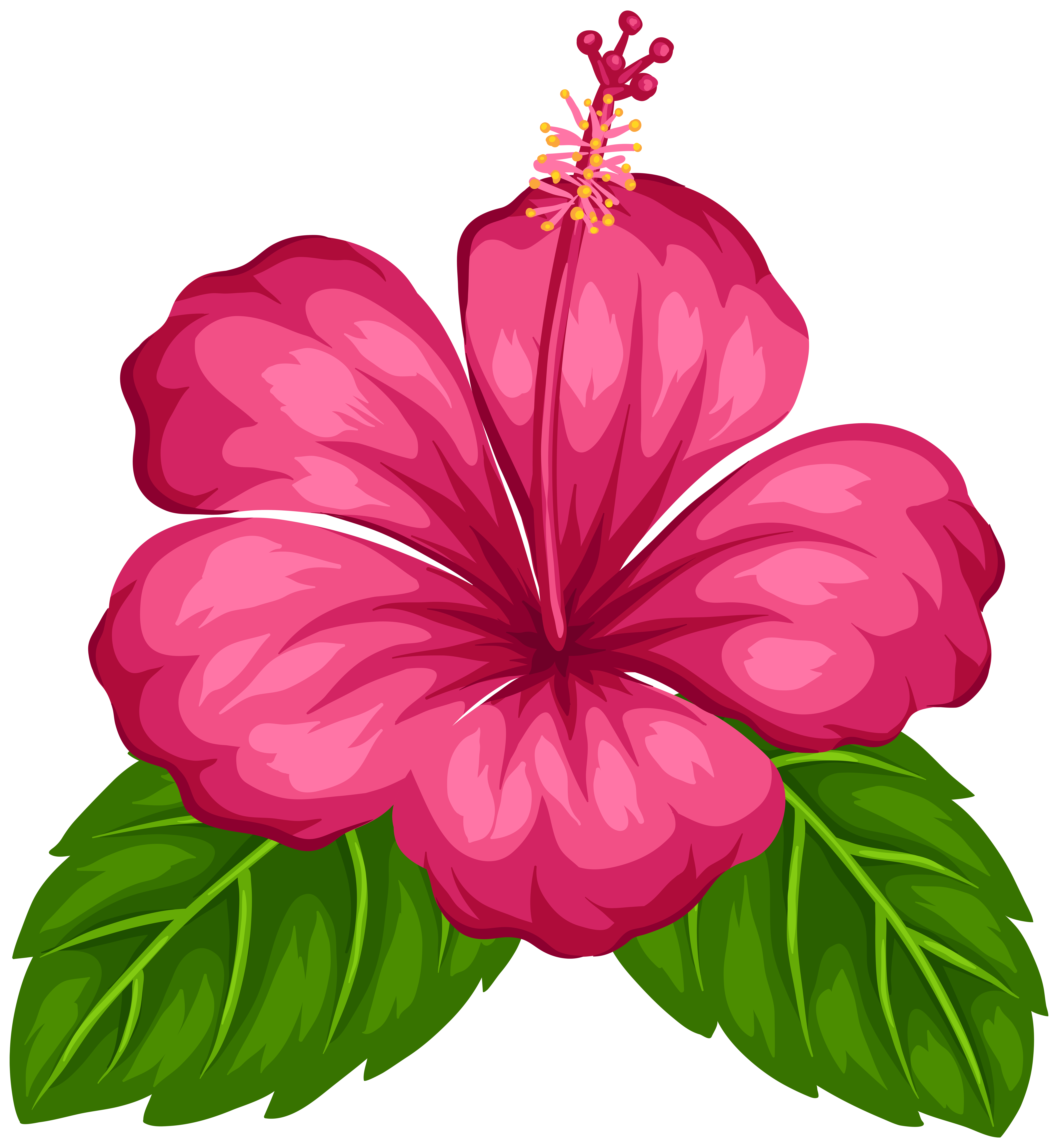 Flowers png images. Free moana clipart at
