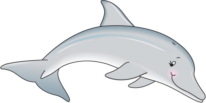 Cute dolphin free images. Dolphins clipart dophin