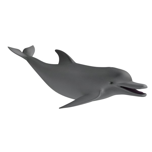 Dolphin clipart moving picture. Free animated download clip