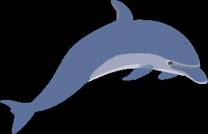Clipart dolphin public domain. Clip art vector online