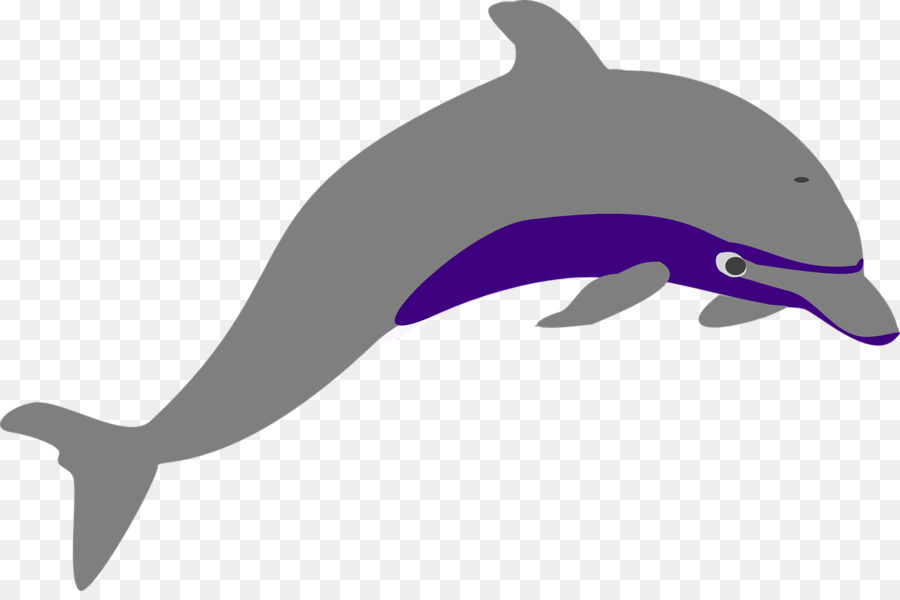 Graphics transparent png image. Dolphin clipart purple